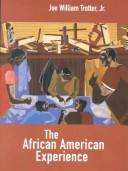 Download The African American experience