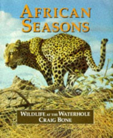 Download African Seasons
